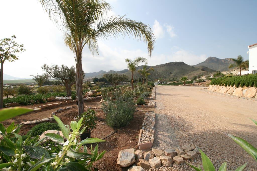 chalet casa con piscina vacaciones rural mazarron - jardines