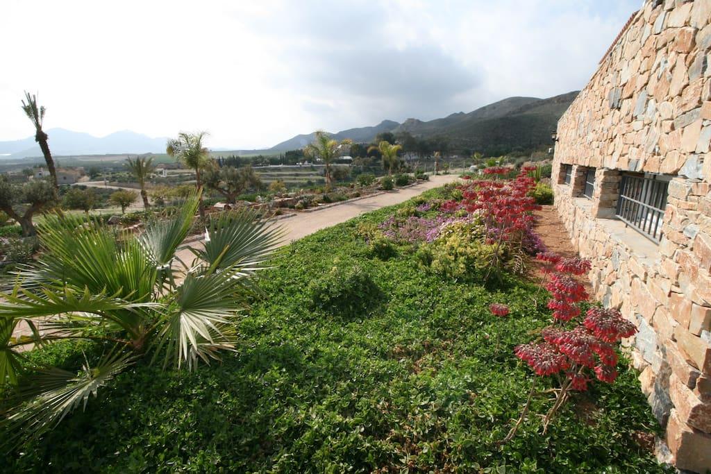 casa con piscina vacaciones rural mazarron